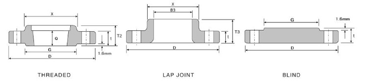 Low Pressure Class 300 flanges structure